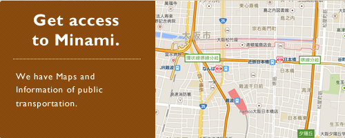 Get access to Minami.